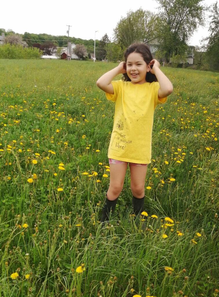 Notre charmante Dafné dans un magnifique champs de pissenlits.